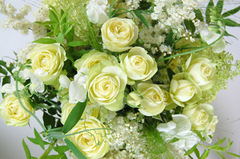 bridal20170201.jpg